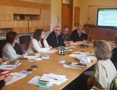 Incontro fra Foresta Modello e FAO a Roma