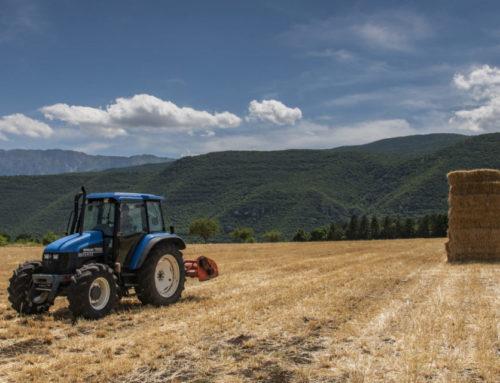 """PSR, """"Gruppi operativi"""" locali per la produttività e la sostenibilità dell'agricoltura"""