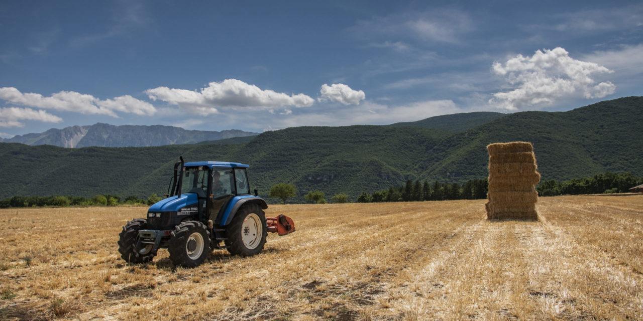 campo agricolo con trattore