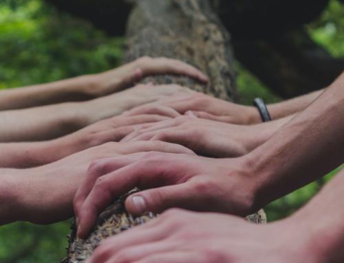 Associazione Foresta Modello Valle Aterno: si apre la campagna d'iscrizioni dei soci fondatori